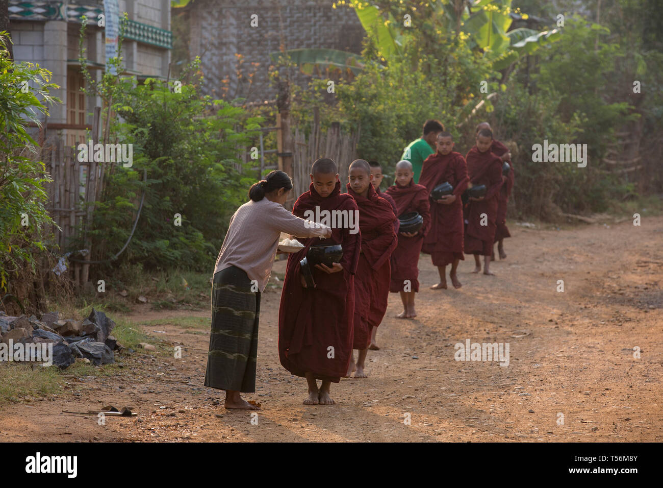 Almsgiving of food to Buddhist novice monks near Inle Lake, Shan State, Myanmar. Stock Photo