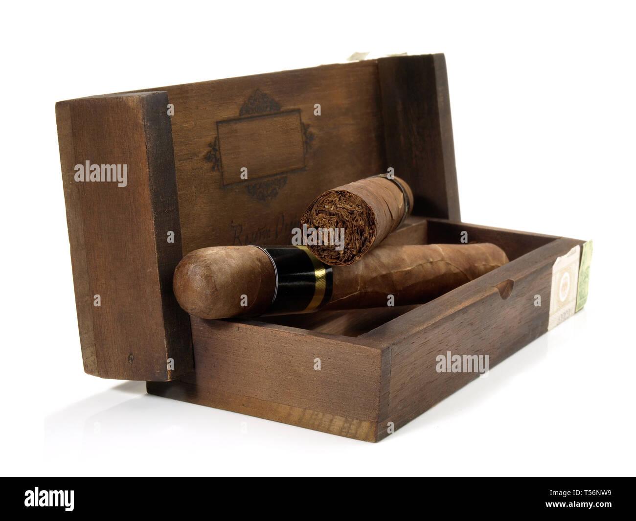 Cigars on white Background - Stock Image