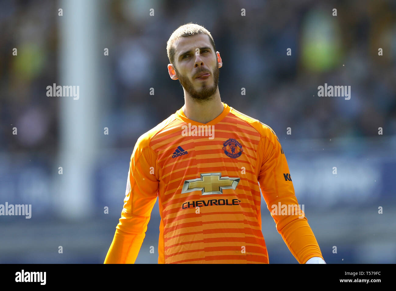 Manchester United Goalkeeper High Resolution Stock Photography And Images Alamy