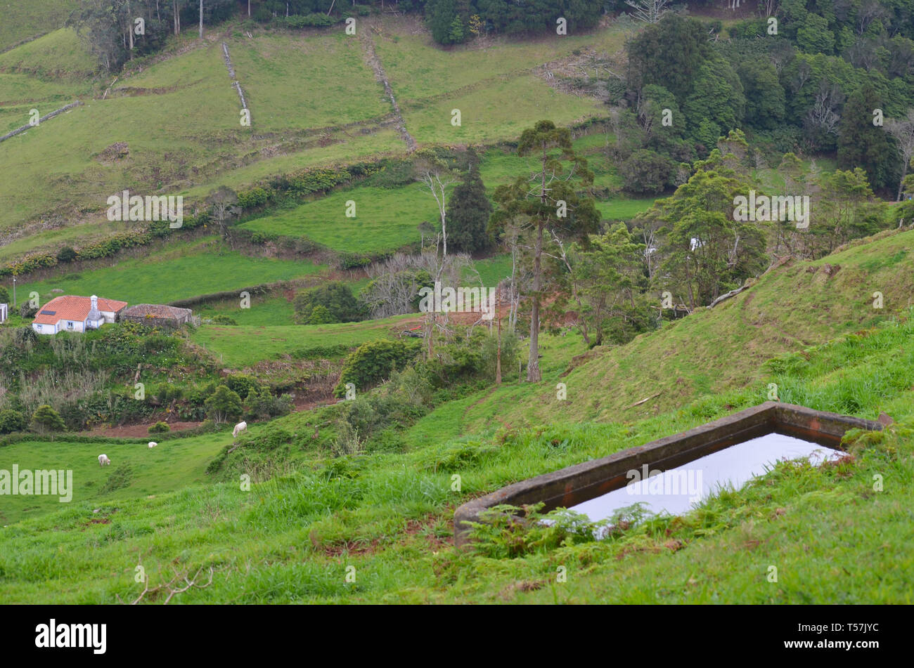 Traditional houses and rural landscapes in Santa Barbara, a small parish in the island of Santa Maria, Azores archipelago Stock Photo