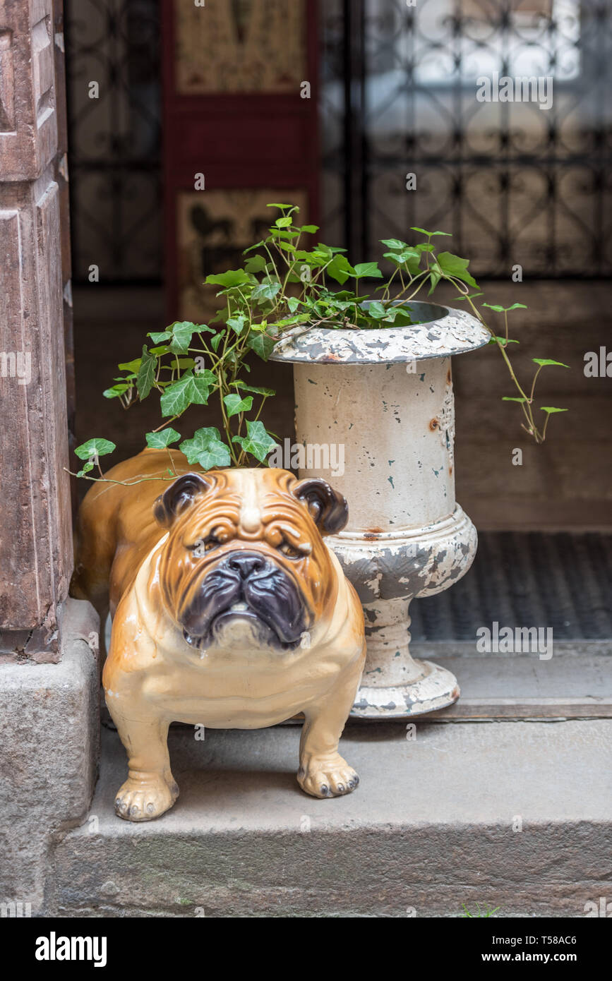 A scowling pottery bulldog guards the entrance to a house in Österlånggatan, Gamla Stan - Stock Image