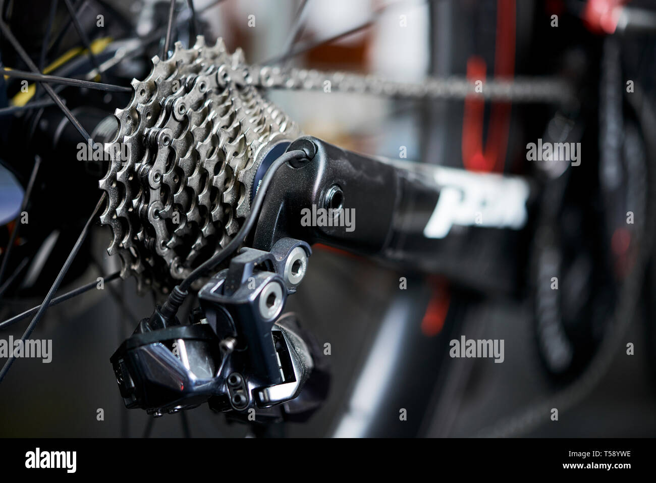 Rear mountain bike cassette on the wheel with chain - Stock Image
