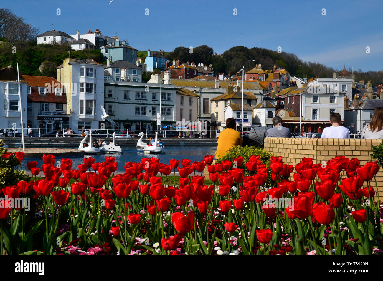 The Old Town Boating Lake with swan pedalos in Hastings, East Sussex, UK Stock Photo