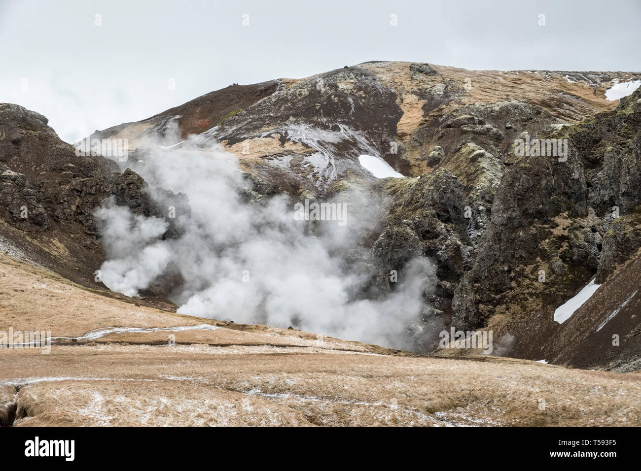 Near Hveragerði, Iceland. Steam rising from geothermal hot springs in the Reykjadalur valley Stock Photo
