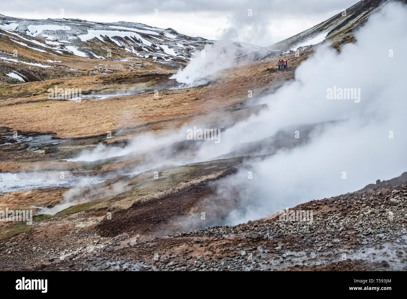 Near Hveragerði, Iceland. Walkers passing geothermal fumaroles on the path up to the popular hot river in the Reykjadalur valley Stock Photo