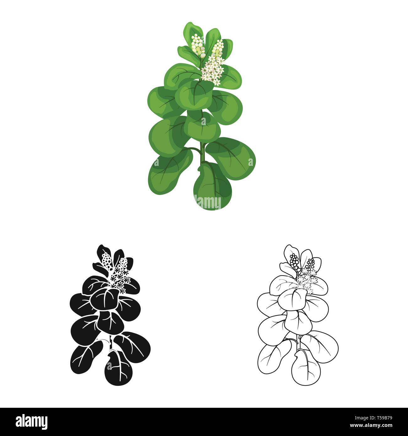 Vector design of leaves and leaf icon. Collection of leaves and botanical vector icon for stock. - Stock Vector