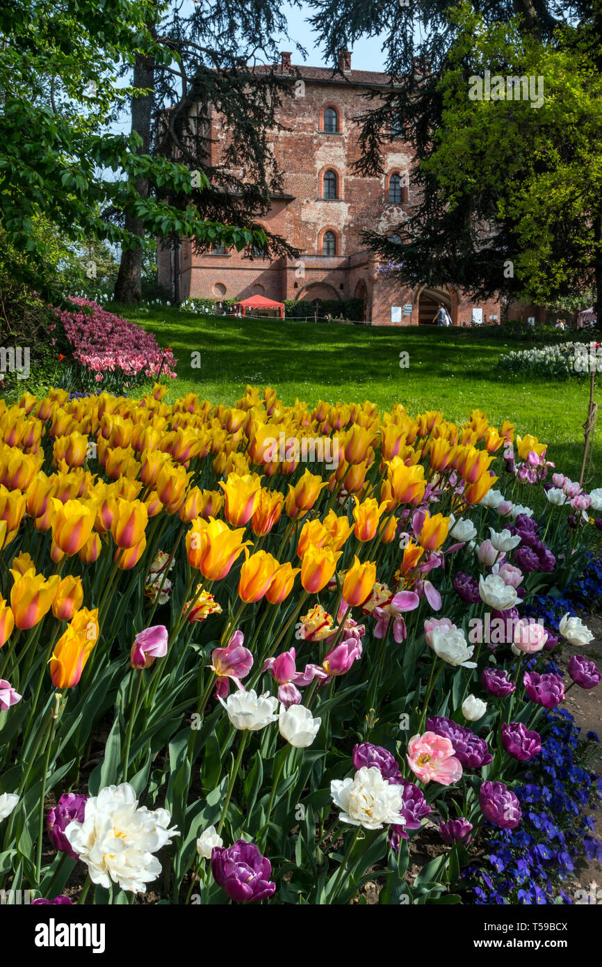 Every year in April the exhibition Messer Tulipano (Mr. Tulip) takes place at  the castle of Pralormo nearby Turin, Italy - Stock Image