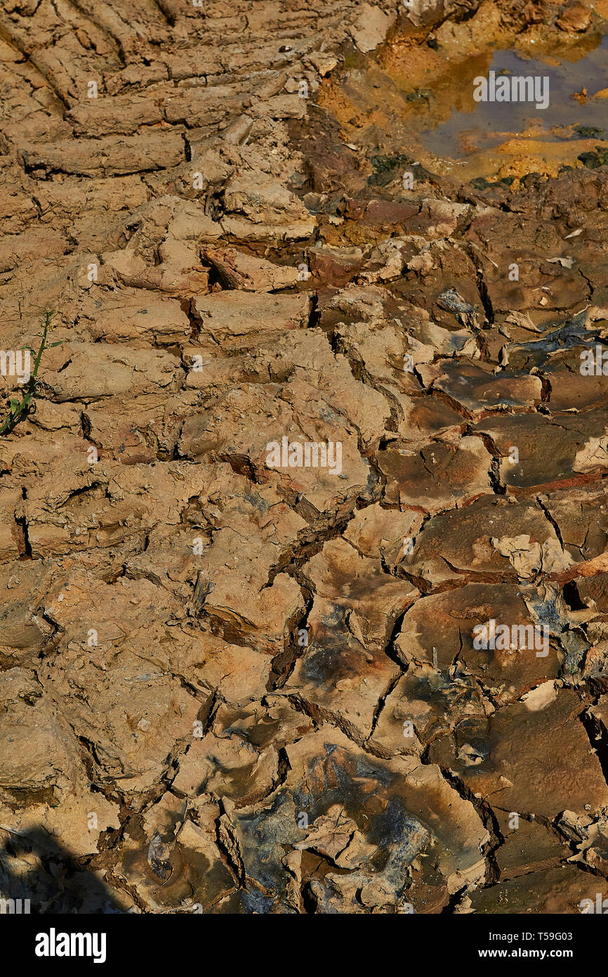 Cracked earth and receding water boding drought and environmental damage - Stock Image