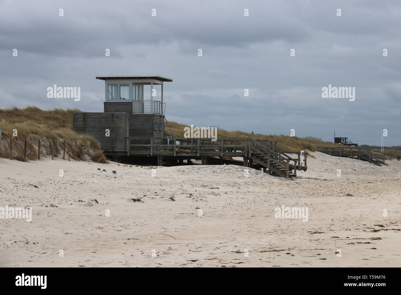 Strand Meer Möwe Wasser Stock Photo