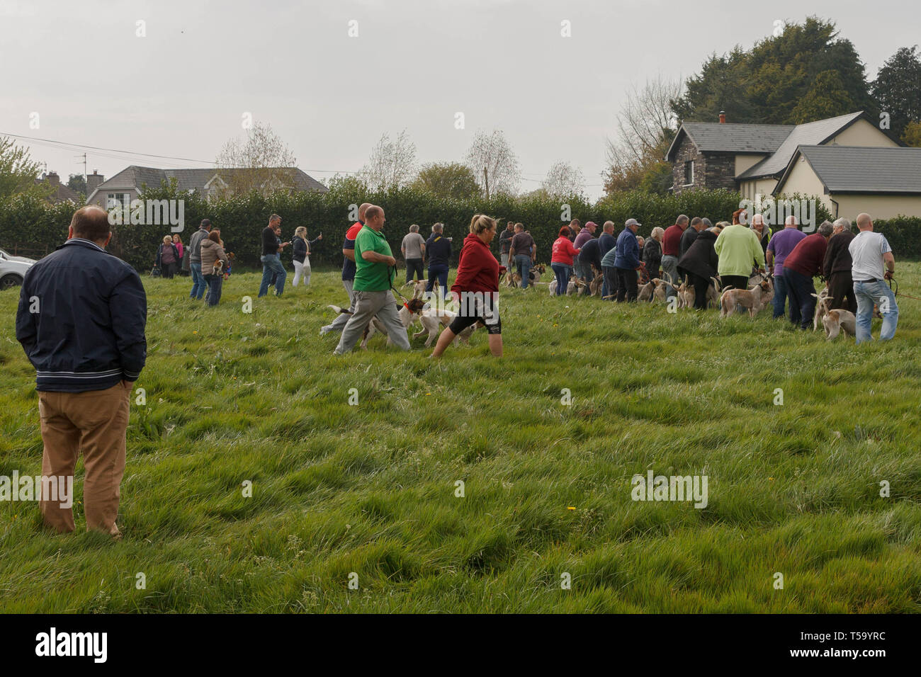 Cork, Ireland, 22nd April, 2019.   Easter Monday Drag Hunt, Killcully, Cork. Stock Photo