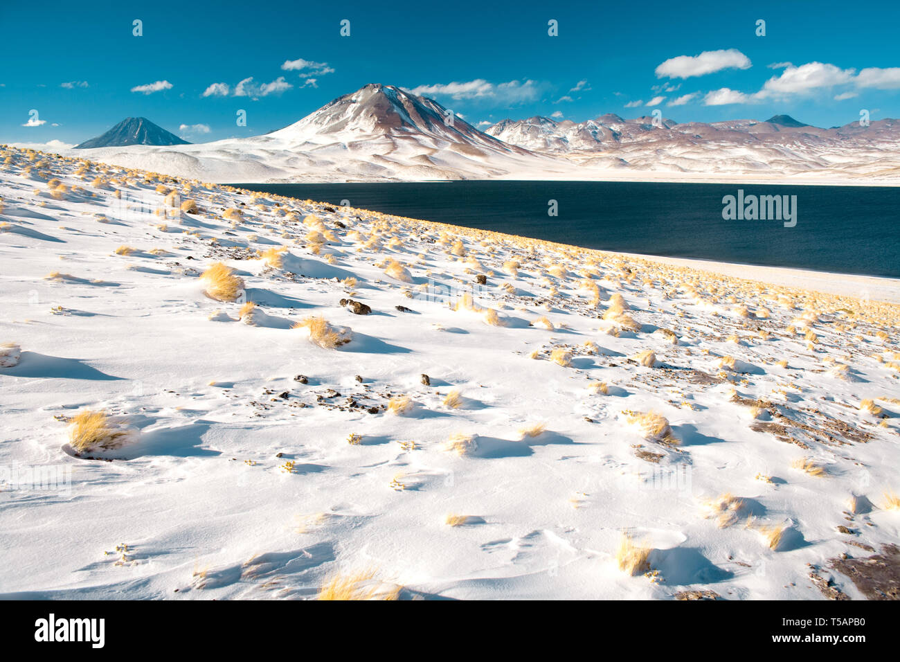 Laguna Miscanti (Miscanti Lagoon) and Cerro Miscanti (Miscanti hill) in the Altiplano (High Andean Plateau) at an altitude of 4350m, Los Flamencos Nat - Stock Image