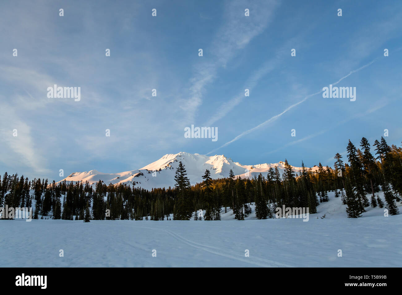 Streaks of clouds pass over Mount Shasta just before sunset as the last light illuminates the volcano in California. - Stock Image