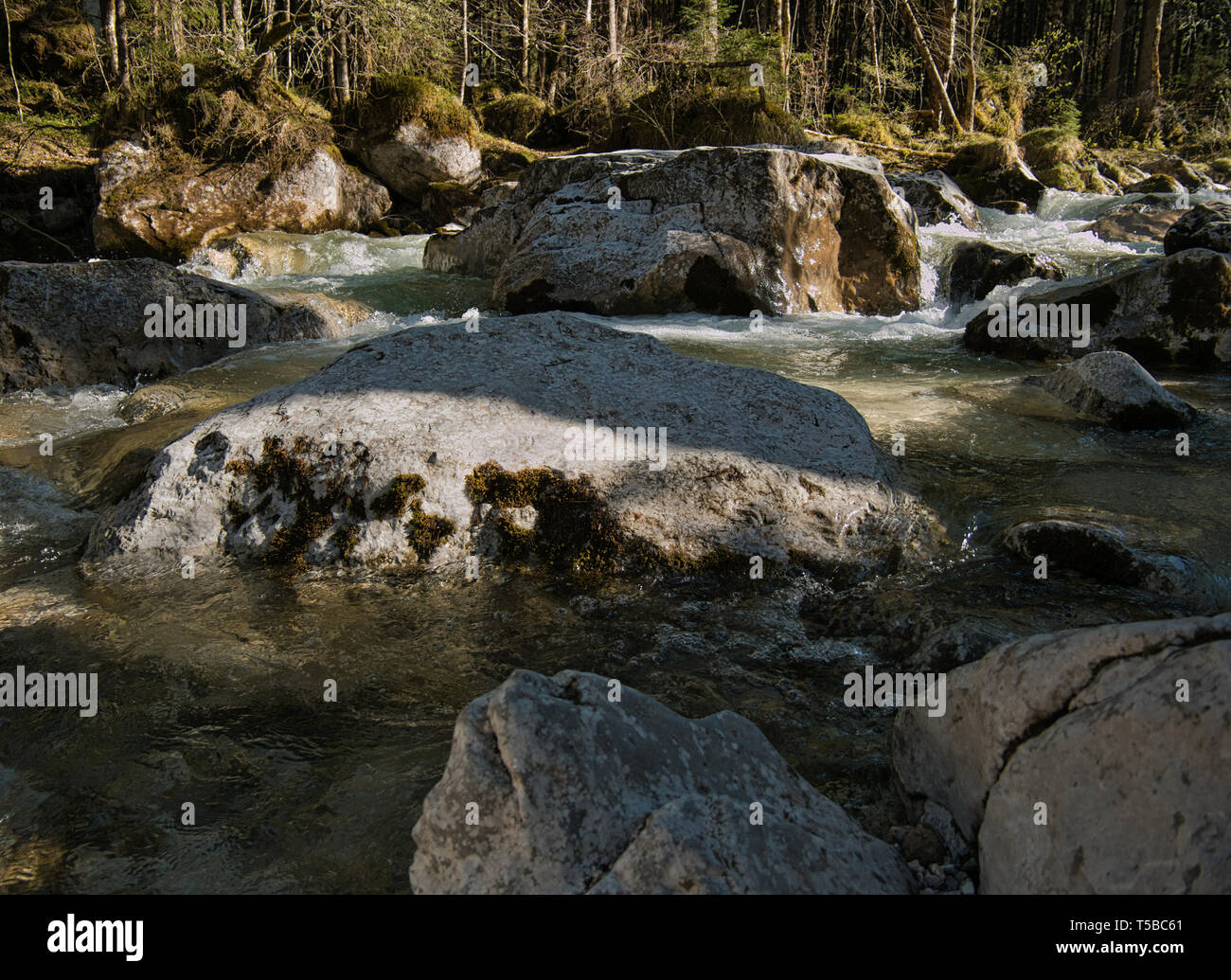 Big rocks in a mountain stream in Bavaria with the forest in the background - Stock Image