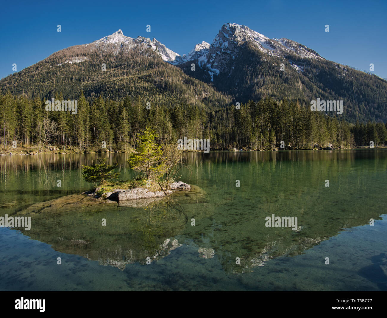 A very small island with flowers and trees in Hintersee - Stock Image