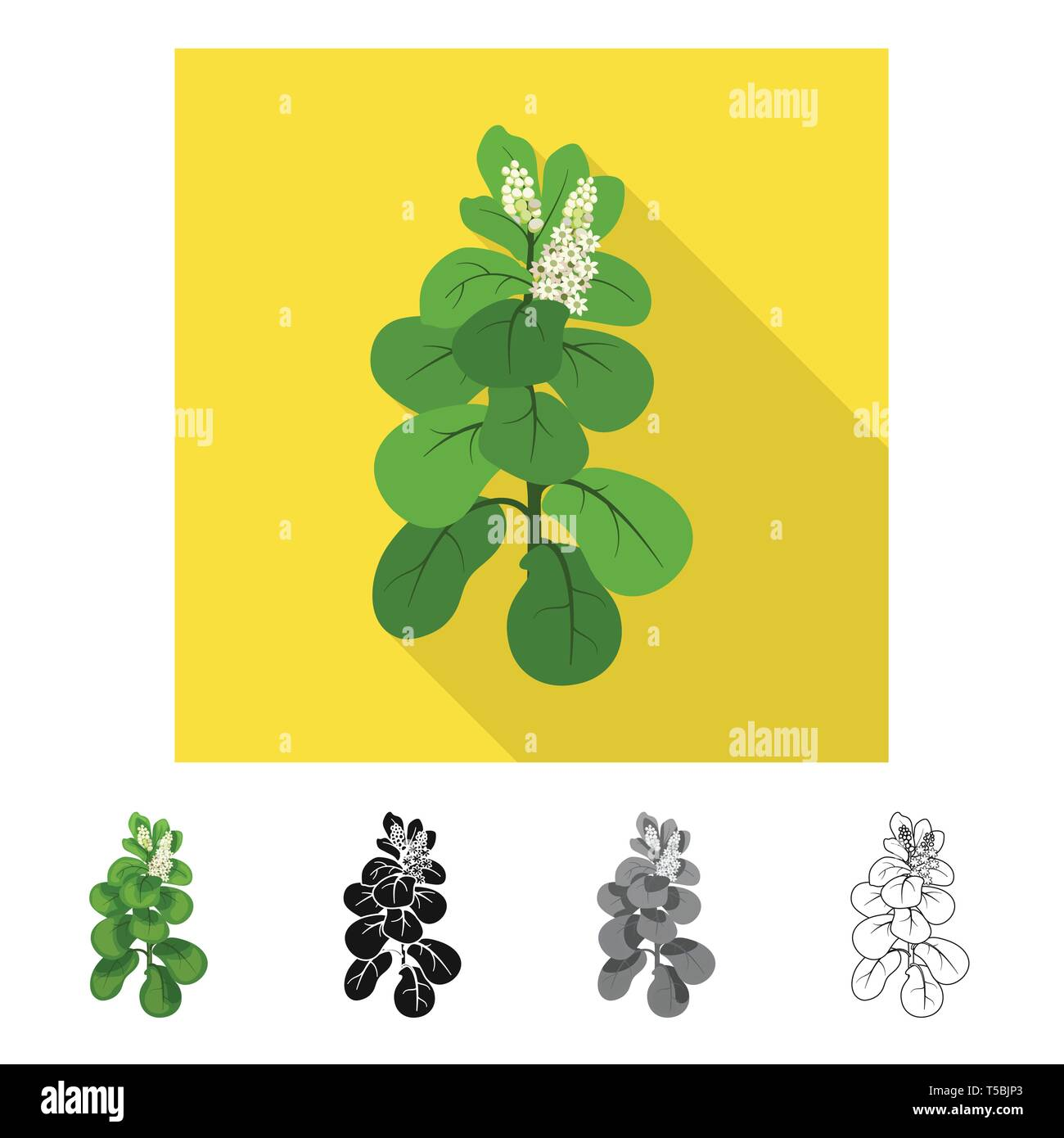 Vector design of leaves and leaf sign. Collection of leaves and botanical stock symbol for web. - Stock Vector