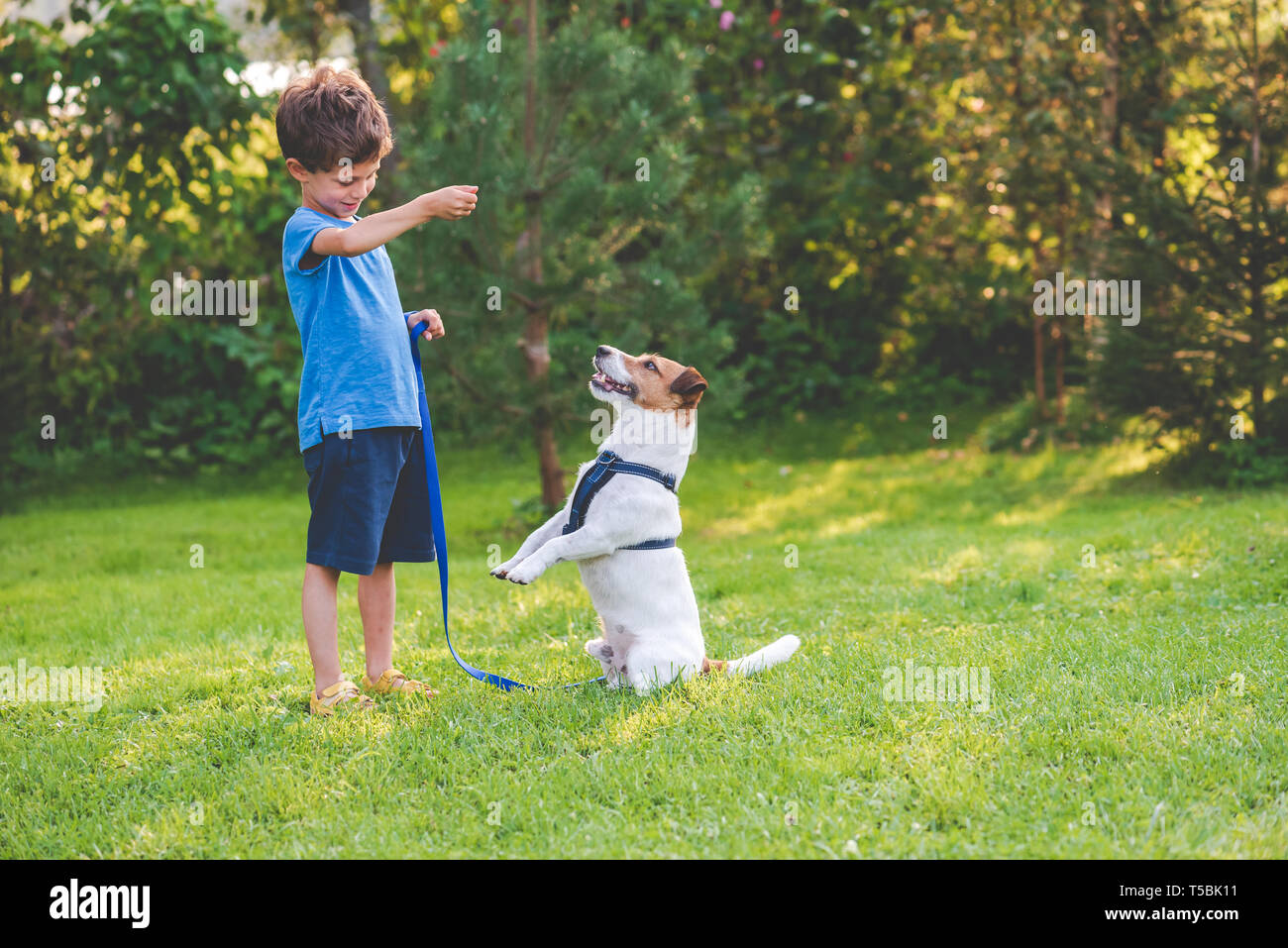 Preschooler kid boy doing dog obedience training classes with his pet - Stock Image