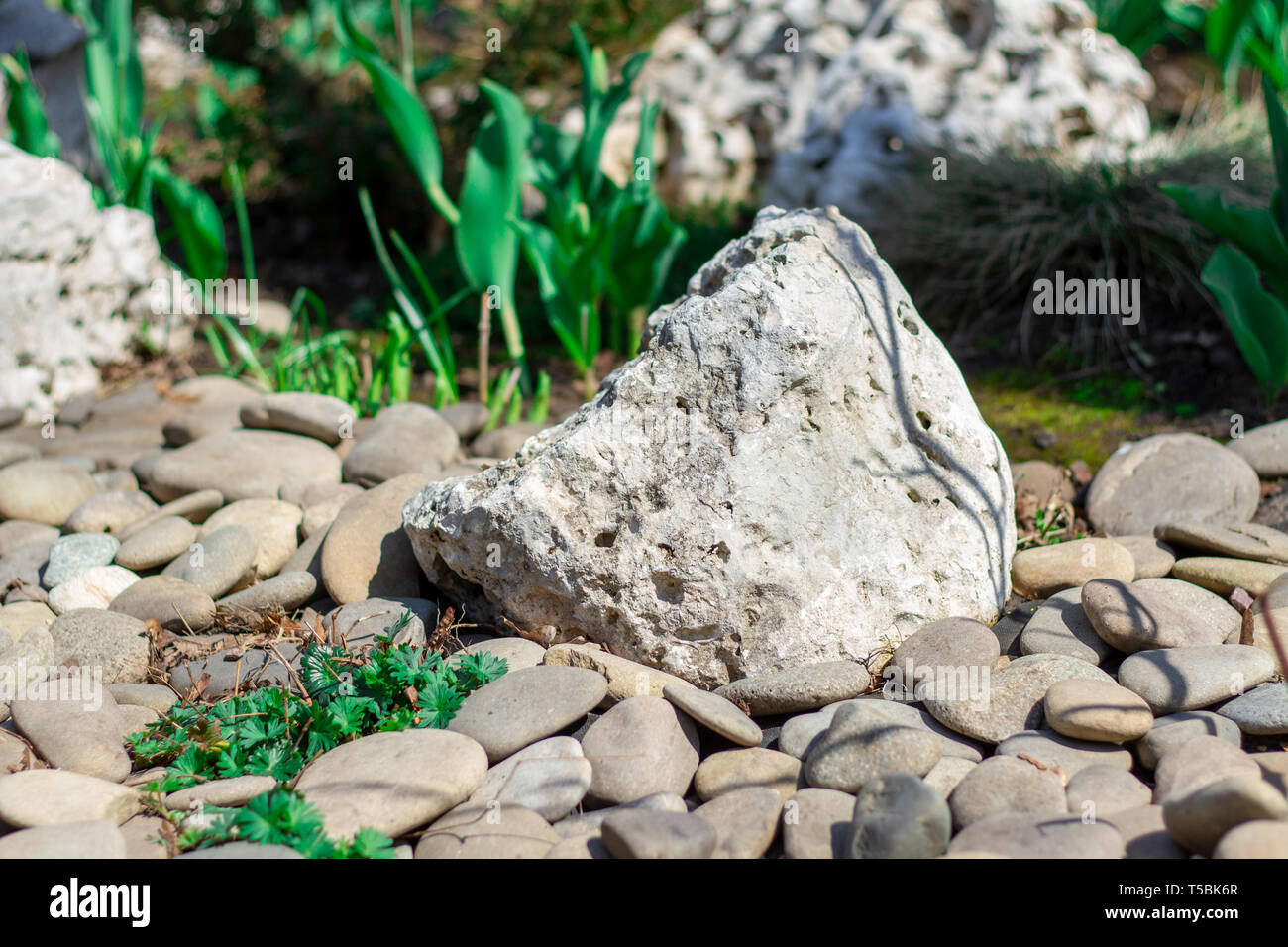 Landscaping On A Bed Flower Decoration Of Stones And Cobblestones Japanese Gardens With Decorations From Large Stones Stock Photo Alamy