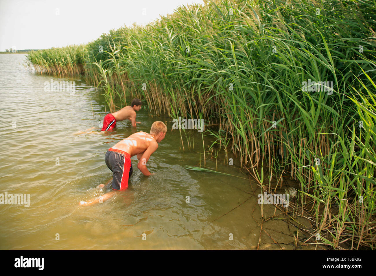two teenage boys exploring the reed at a lakeshore - Stock Image