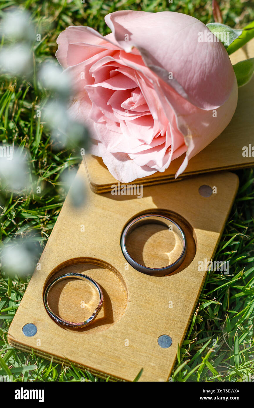 1588f70e6 White gold and titanium wedding rings in a wooden slide box. Pink rose.  Green