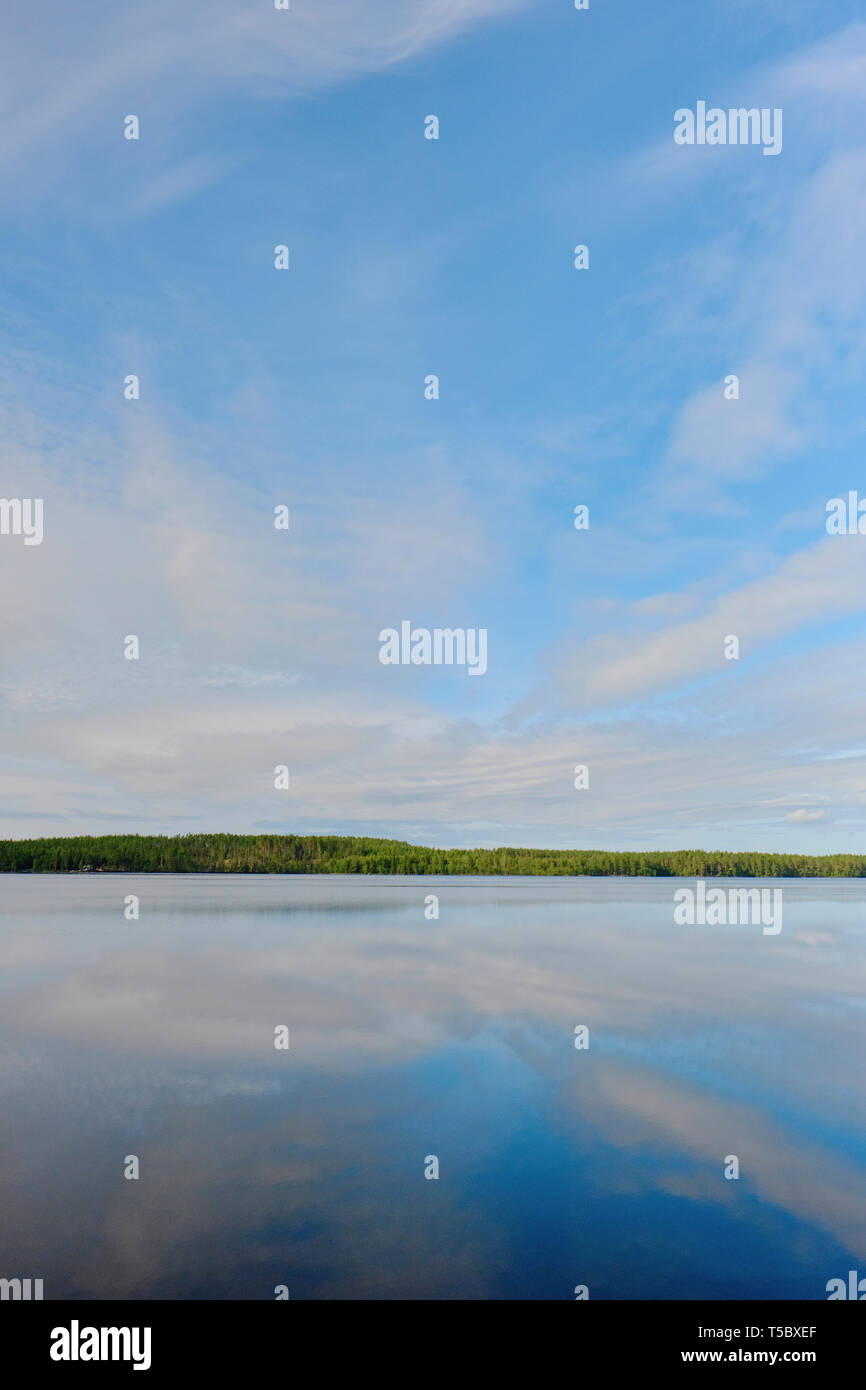 A minimal blue sky summer lake and green forest landscape of Sweden with copy space. - Stock Image