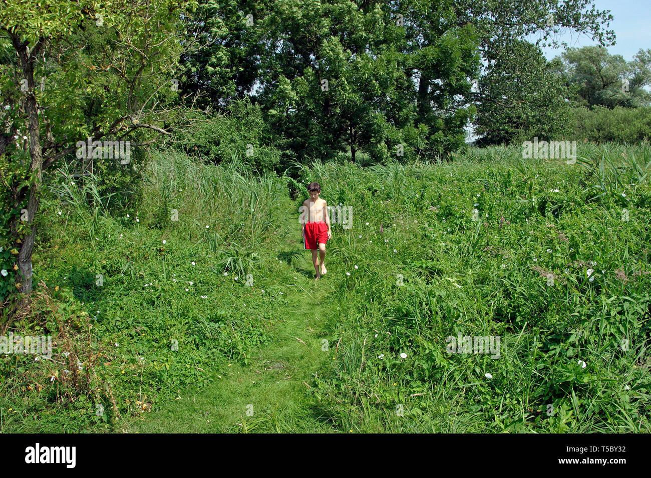 young boy exploring nature - Stock Image