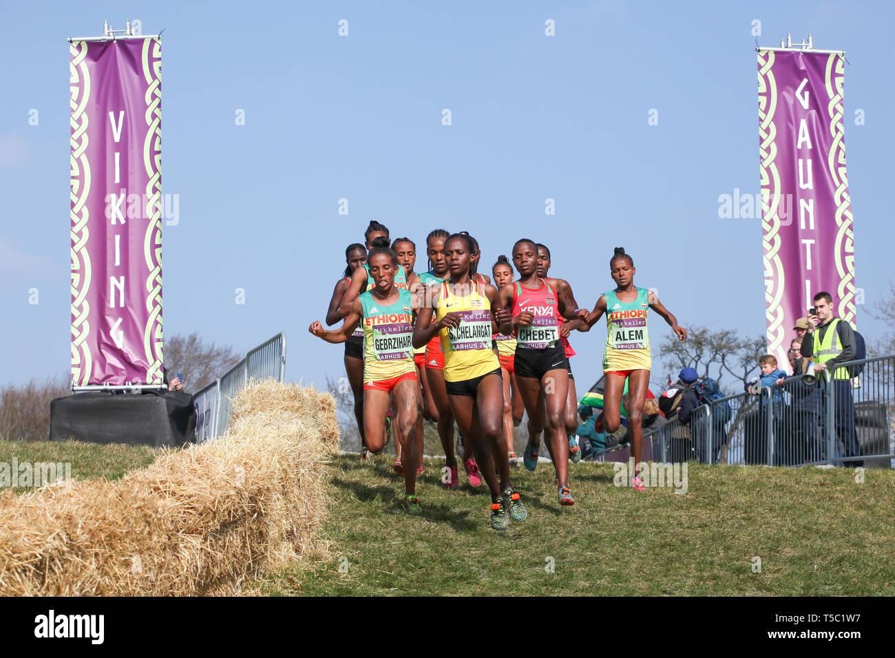 Aarhus, Denmark - March 30 2019: IAAF Mikkeller World cross country championship in Aarhus Moesgaard 2019 with junior women race - Stock Image