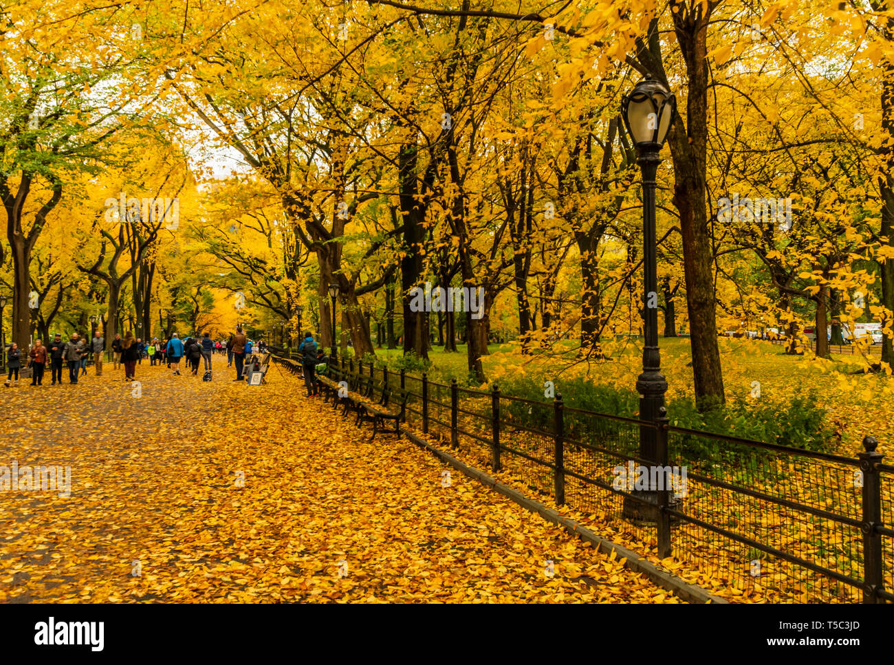 The famous Literacy Walk in Central Park - Stock Image