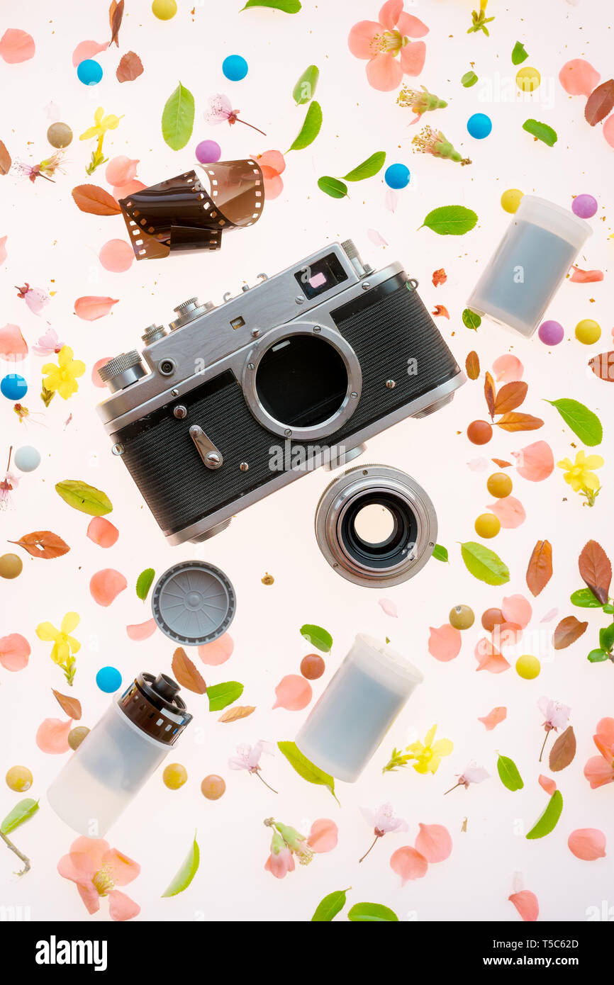 Vintage film camera flat lay with colorful vivid floral springtime decoration of wildflower petals and leaves - Stock Image