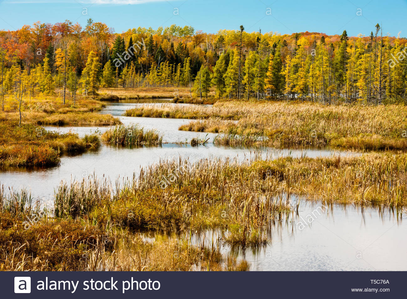 Land O Lakes Stock Photos & Land O Lakes Stock Images - Alamy