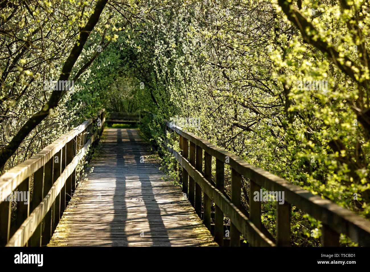Winzlar,Wilhelmstein Insel am Steinhuder Meer,Deutschland.Bridge and Tunnel style,Steinhuder Meer. - Stock Image