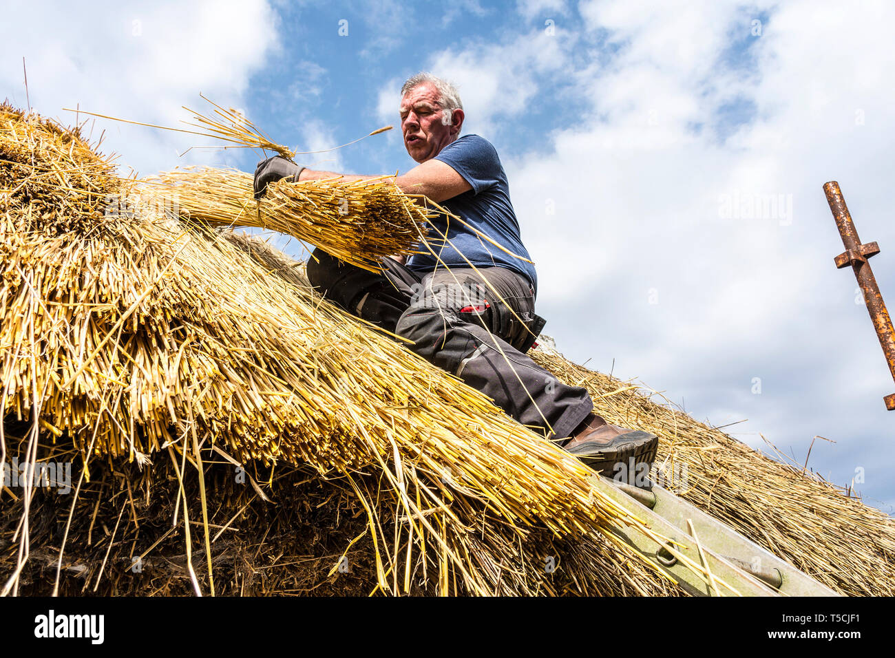 Traditional Thatching Stock Photos Amp Traditional Thatching