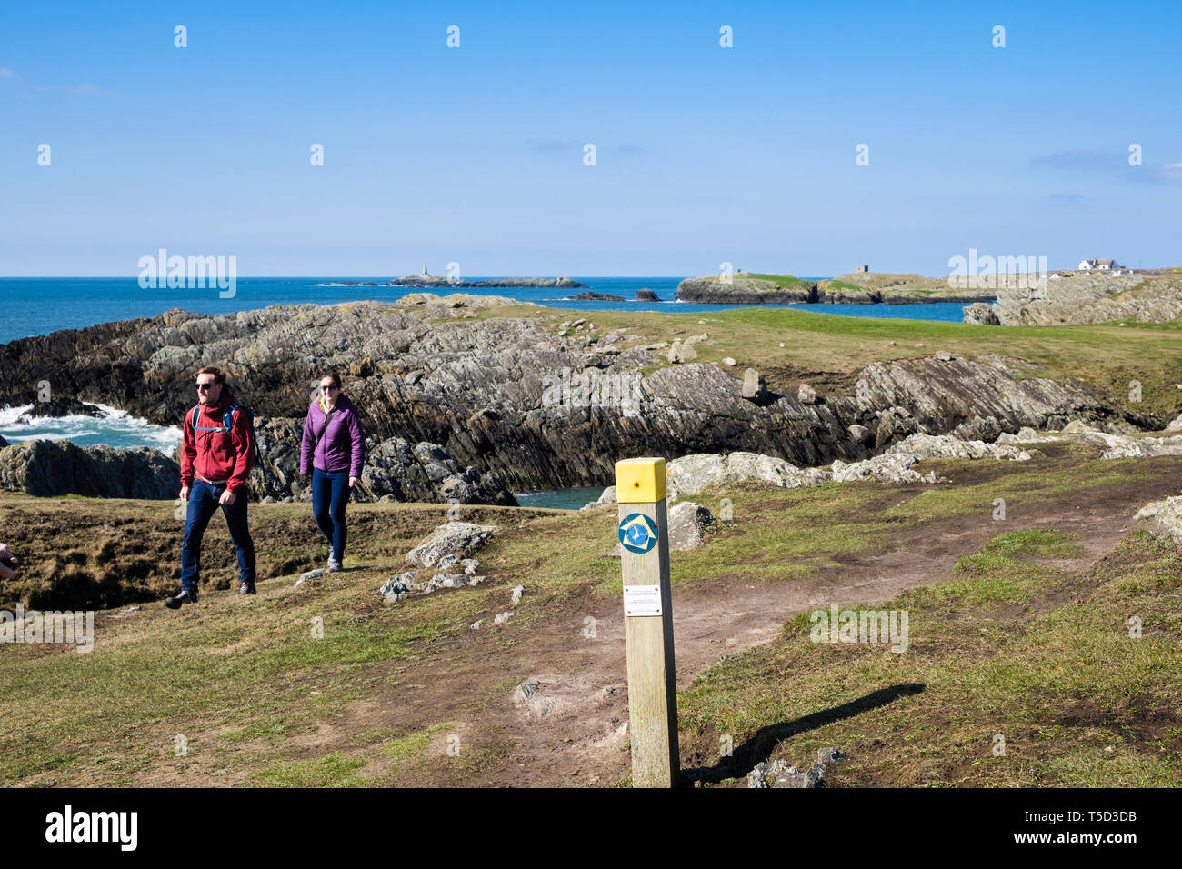 Two people walking on the Isle of Anglesey Coastal Path from Rhoscolyn, Isle of Anglesey, Wales, UK, Britain Stock Photo