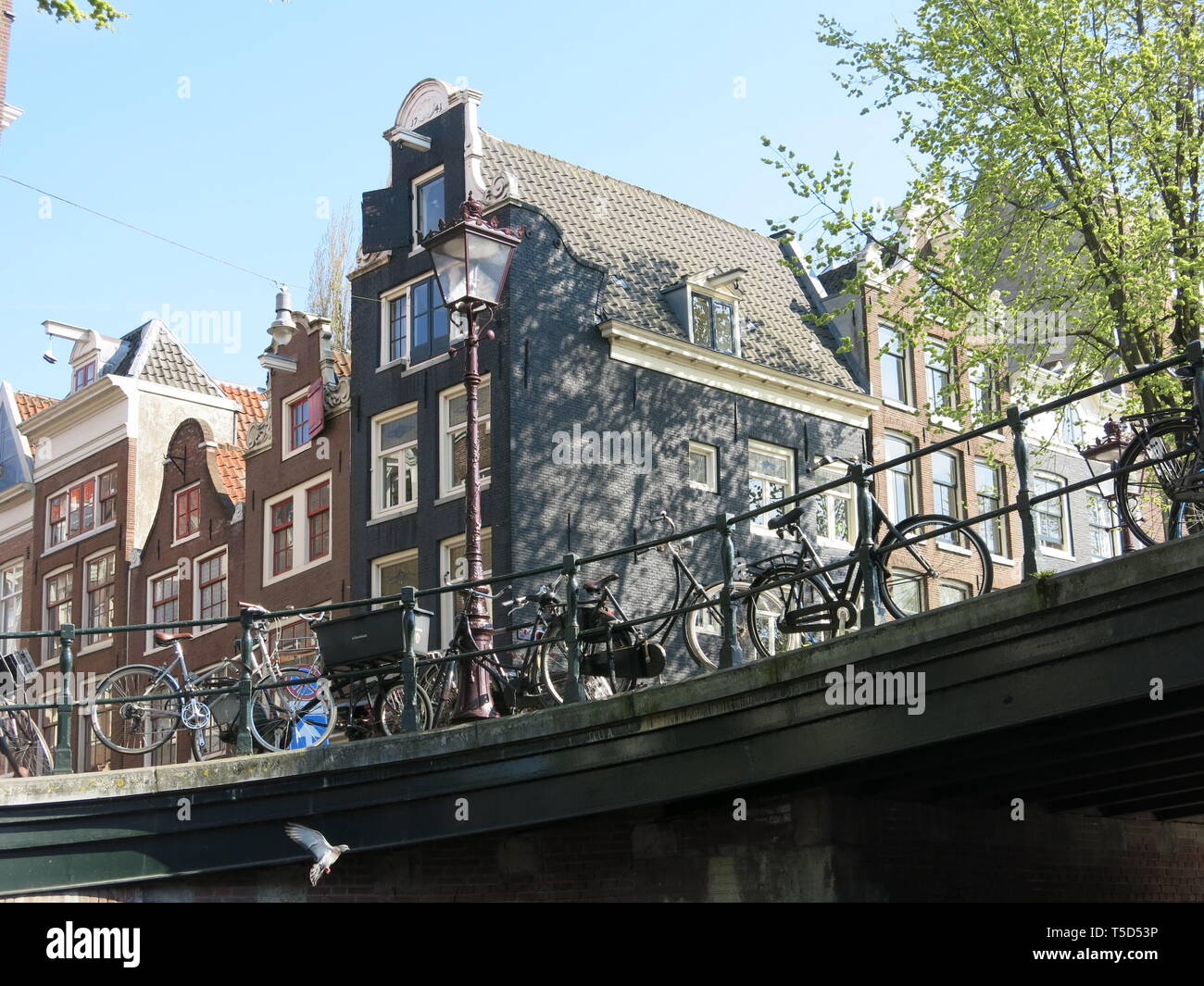 A typical Dutch scene in Amsterdam with bicycles parked along the railings of a canal bridge and tall houses with gables in the background - Stock Image
