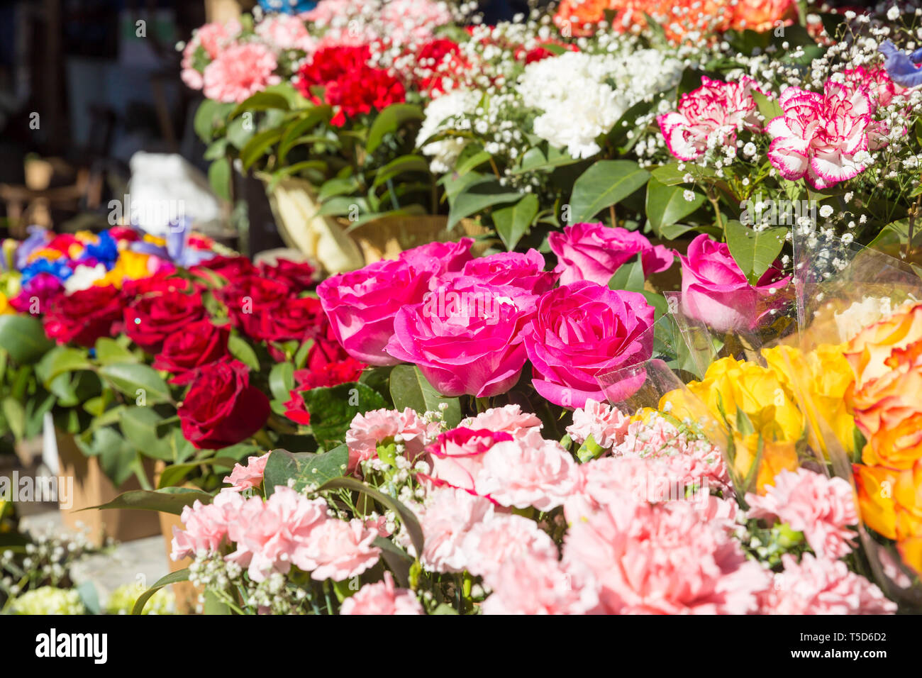 photo of flower bazaar for graphic and web design, for website or