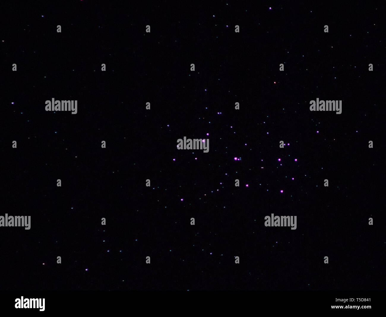 night sky stars pink pleiades Stock Photo