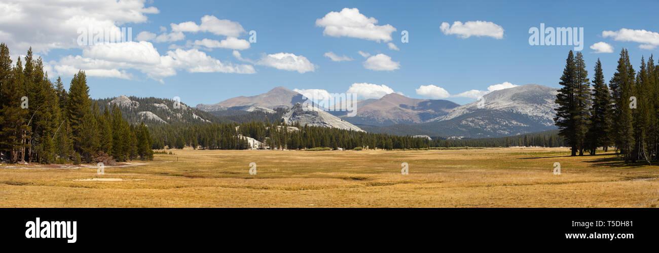 Tuolomne Meadows, Yosemite National Park, California, USA. Stock Photo