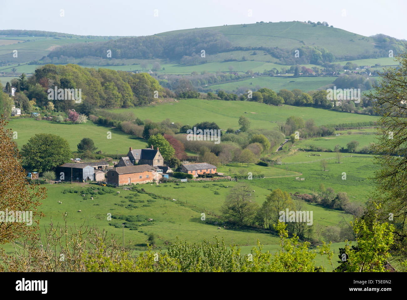 Shaftesbury, Dorset, England, UK. April 2019. A rural view across Blackmore Vale open Dorset countryside from Shaftesbury. - Stock Image
