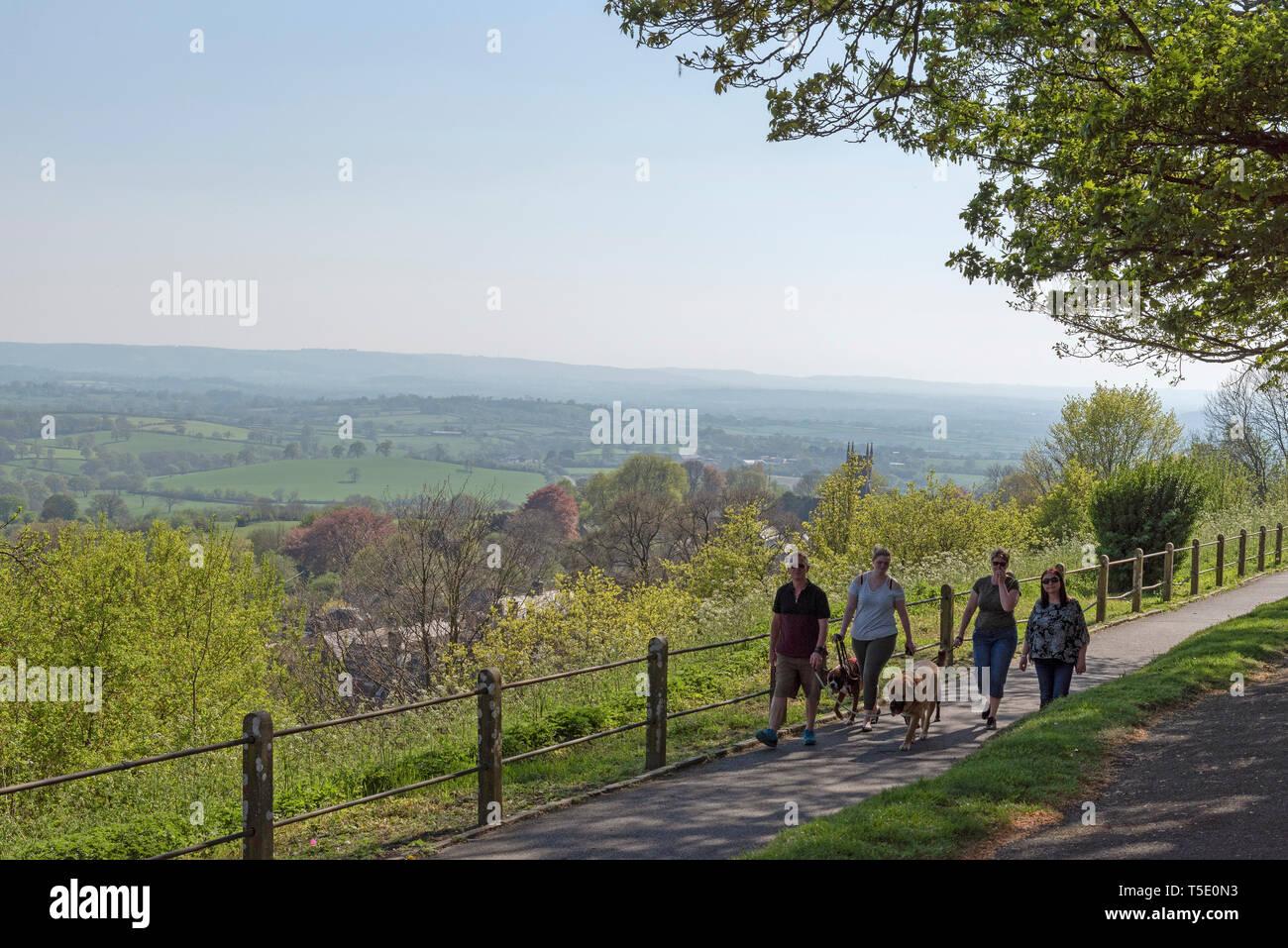 Shaftesbury, Dorset, England, UK. April 2019. Dog walkers on The Shaftesbury Heritage Trail. - Stock Image