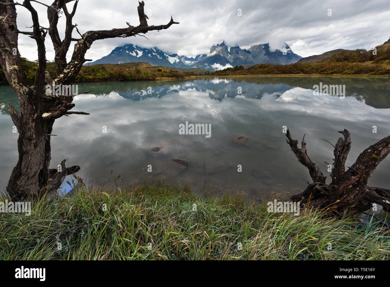 the lake Pehoe and the massif of thel Paine, Torres del Paine NP, Chile - Stock Image