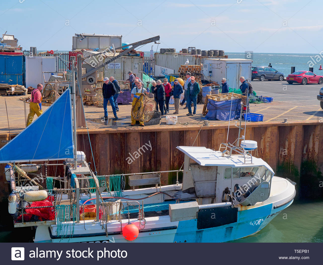 Group of people watching trawlermen off loading their daily catch of fresh caught fish in exmouth harbour marina england uk - Stock Image