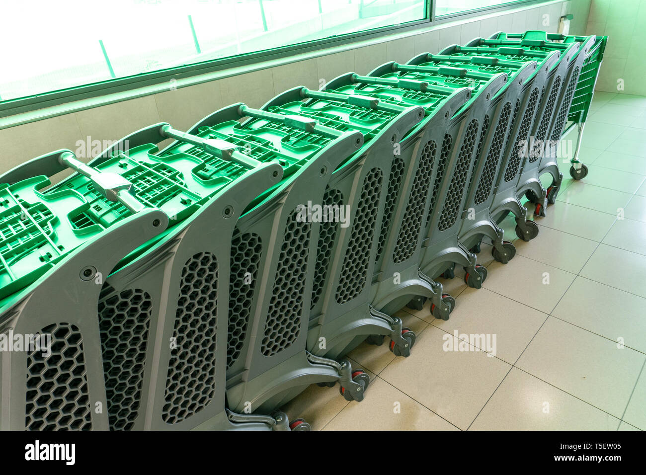 Row of empty plastic shopping cart at supermarket entrance. Consumerism concept - Stock Image