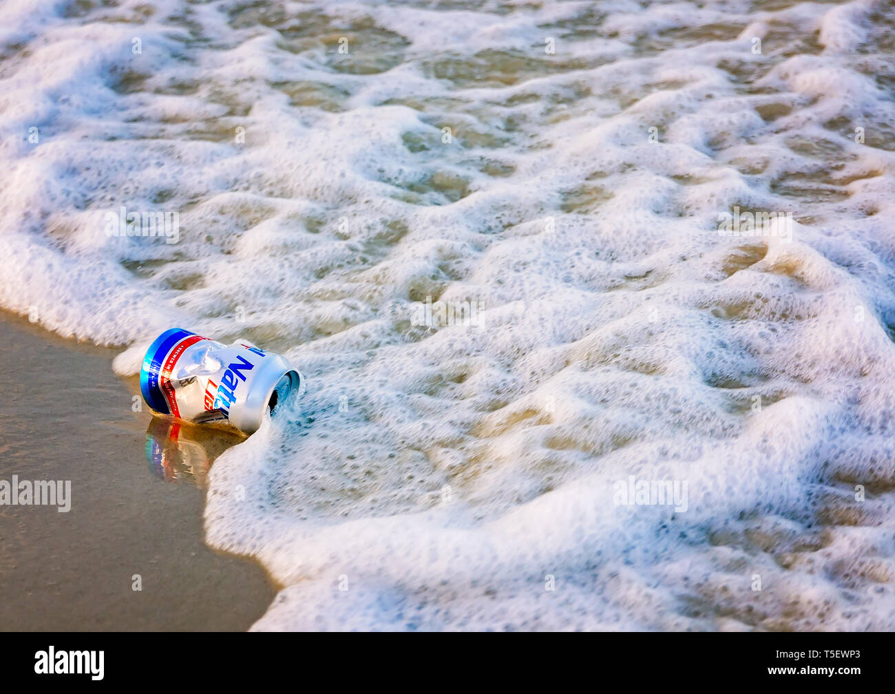 A Natural Light beer can lays on the beach, April 19, 2019, in Dauphin Island, Alabama. Most disposable cans like this are made from aluminum. - Stock Image