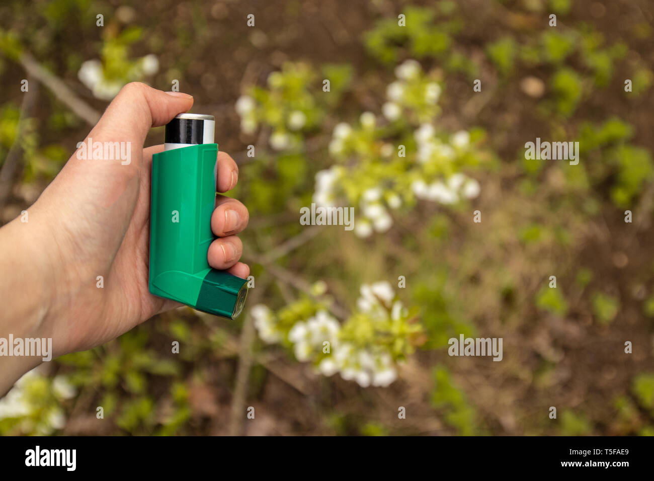 Female asthma inhaler hand near a blossoming tree - Stock Image