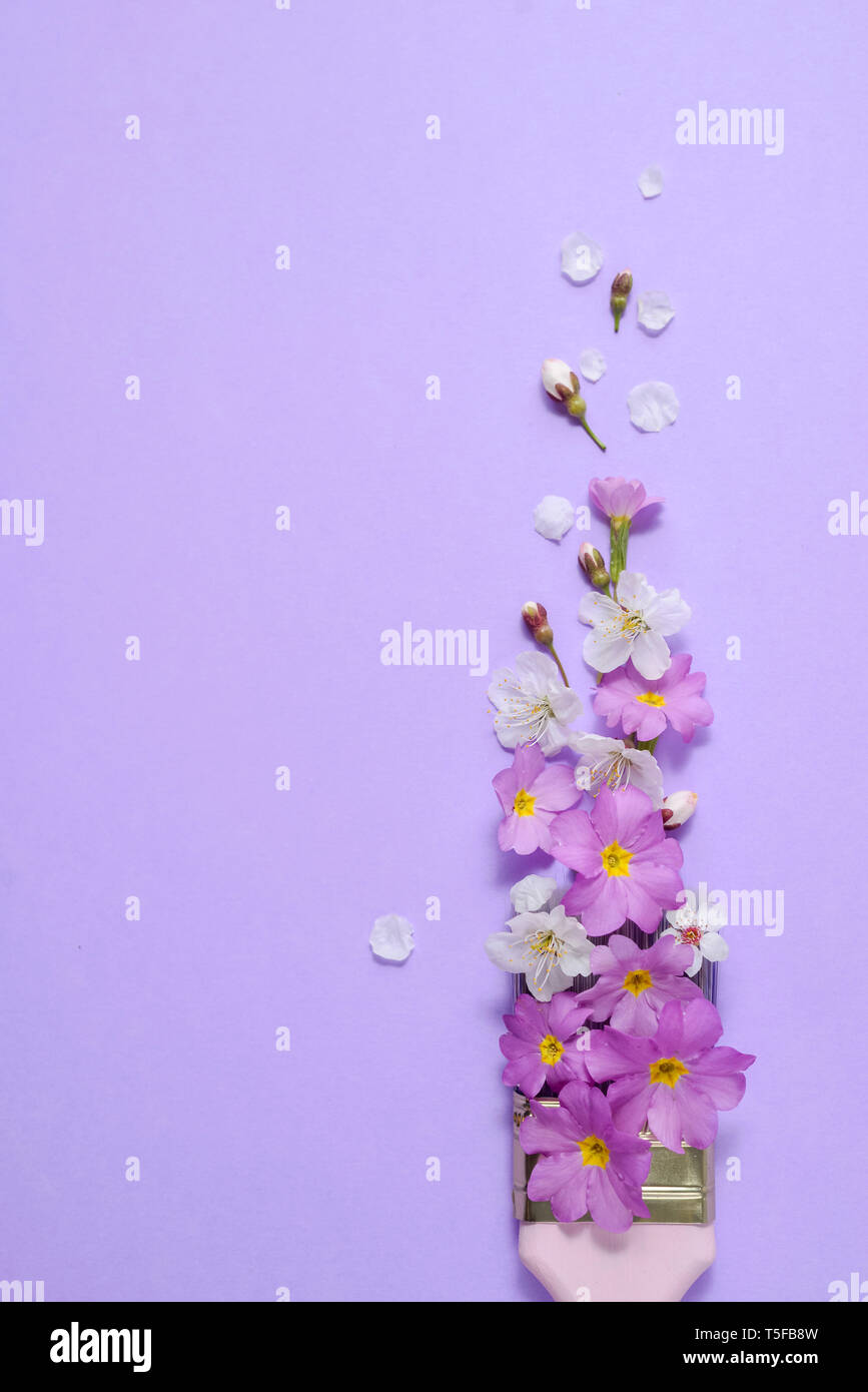 Creative concept. Paintbrush with cherry blossoms and purple flower on pastel purple background. Minimal nature composition with copy space.Flat lay,  Stock Photo