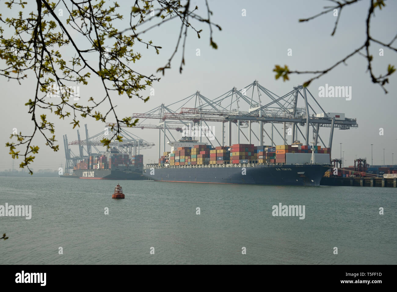 Container ship at Southampton Dock, Hampshire, England, United Kingdom. - Stock Image