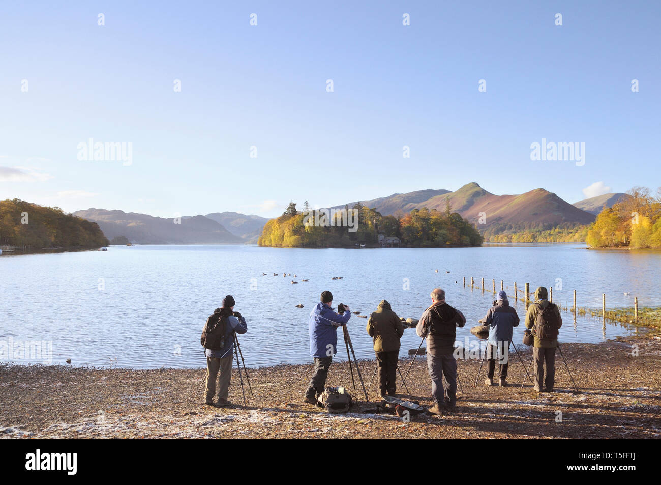 A group of photographers with tripods on the shores of Derwentwater looking towards Derwent Isle and Catbells, Lake District, England, UK - Stock Image