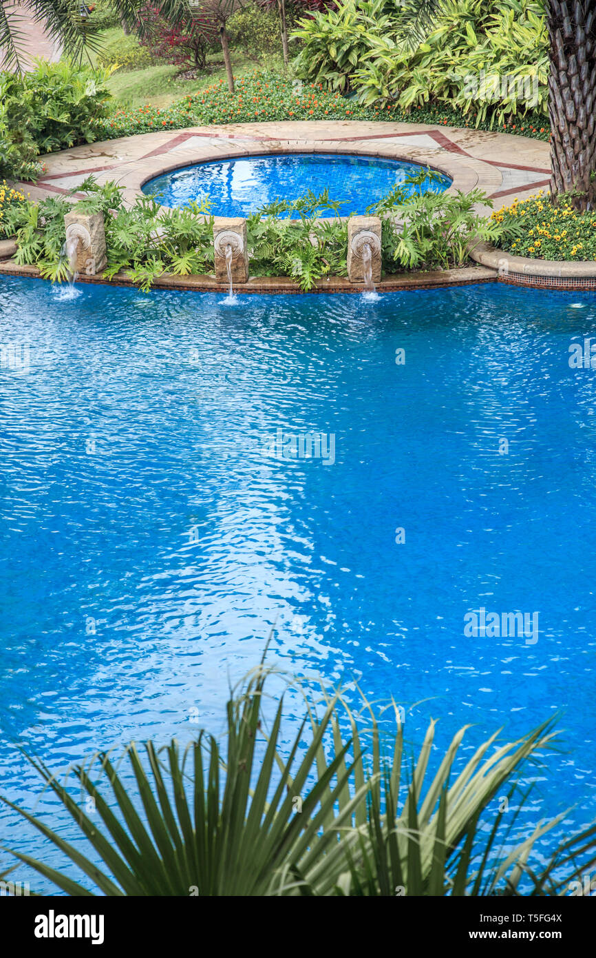 Swimming pools surrounded by palm trees and lush evergreen ...