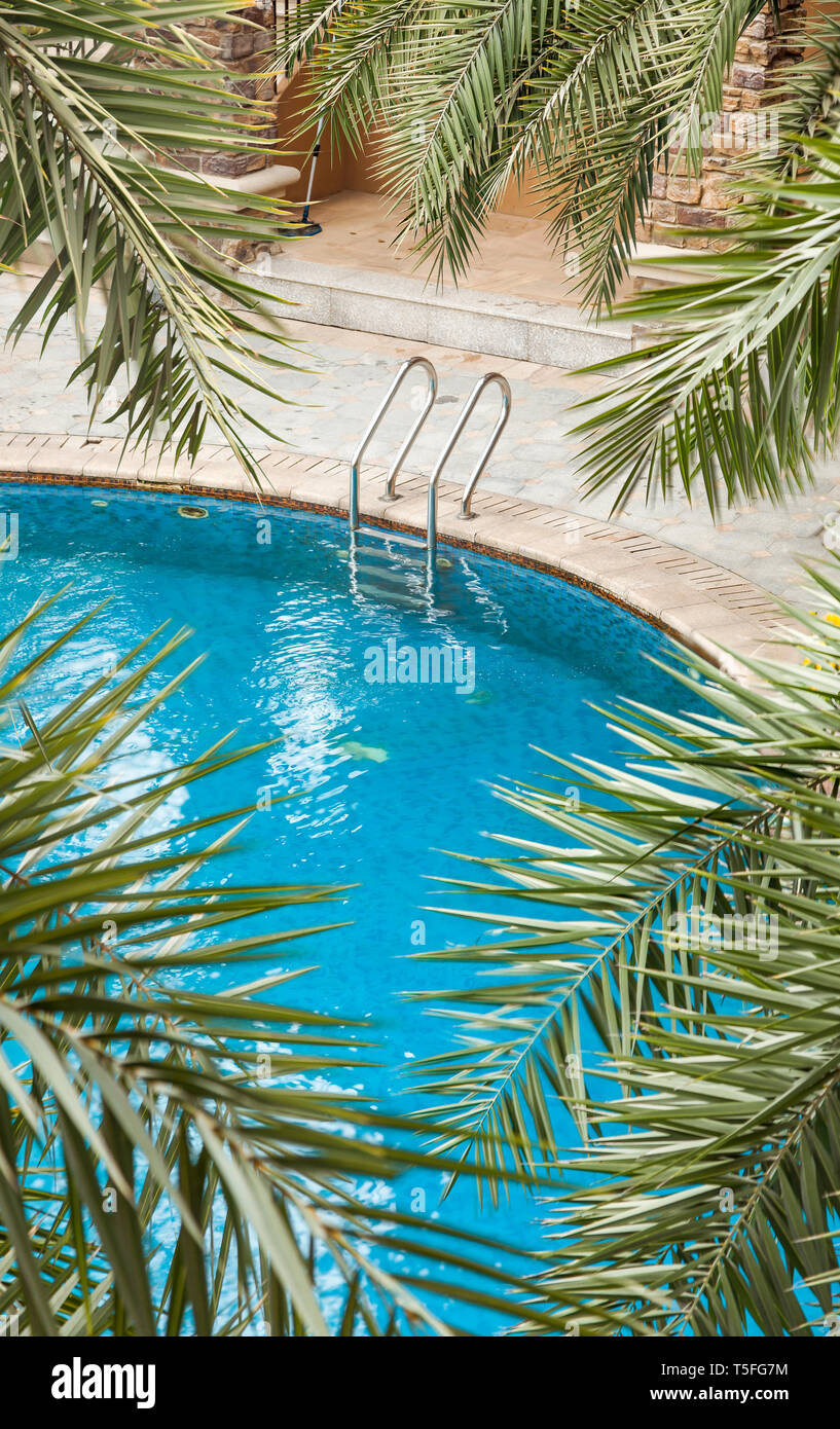 Swimming pools surrounded by palm trees and lush evergreen in a ...