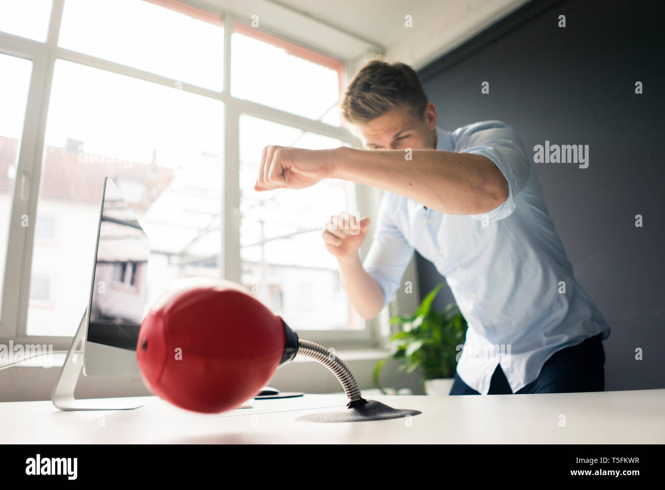 Young businessman at desk in office boxing with punching ball - Stock Image
