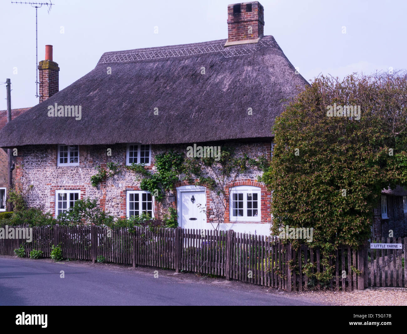 Lovely thatched cottage in Singleton typical West Sussex village England UK - Stock Image